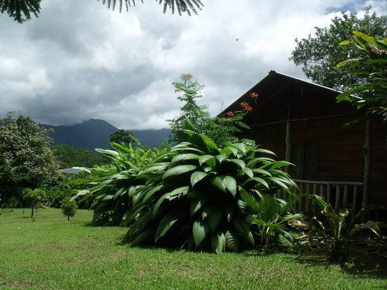 Cataratas Bijagua Lodge: cabaña