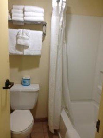 Holiday Inn Hotel & Suites Anaheim (1 BLK/Disneyland): Commode - Tub/Shower