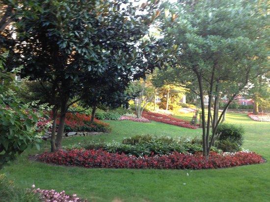 Washington Marriott Wardman Park: Some of the garden area around the hotel