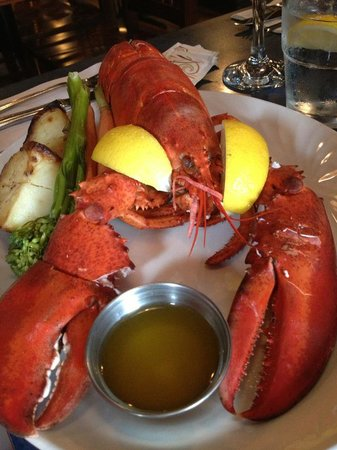 Billy's Seafood Co : lobster