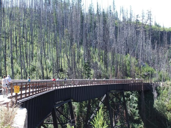 Myra Canyon Bike Rentals: Crossing one of the 18 trestles