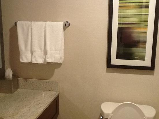 DoubleTree by Hilton Hotel South Bend: Immaculate bathrooms....