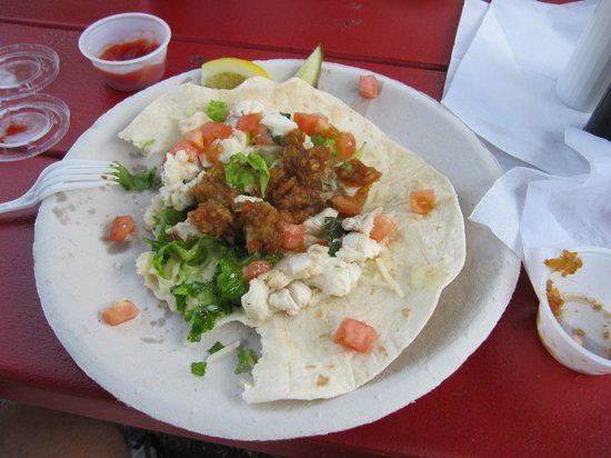 Captains Catch: Haddock fish tacos were a wonderful blend of flavors