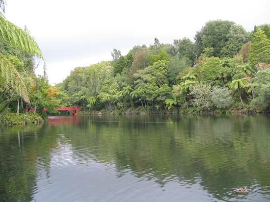 Pukekura Park: One of the lakes...