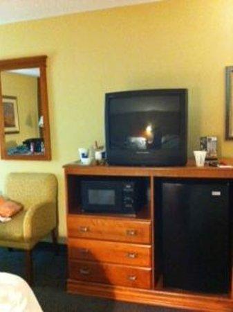 Soo Locks Lodge & Suites: Room