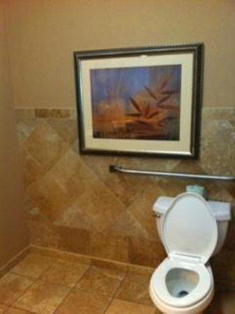 Soo Locks Lodge & Suites: Bathroom