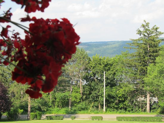 Idlwilde Inn: Looking towards Seneca Lake