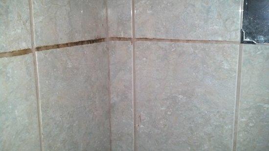 Qorichaska Hostal: Bathroom / mildew 2.