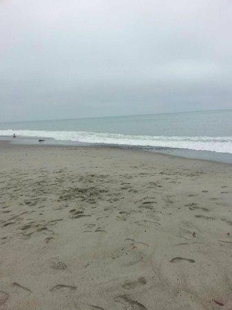 Doheny State Beach : The beach