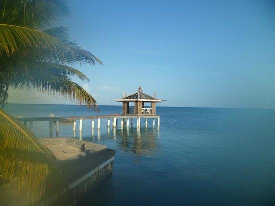 Lost Paradise Inn照片