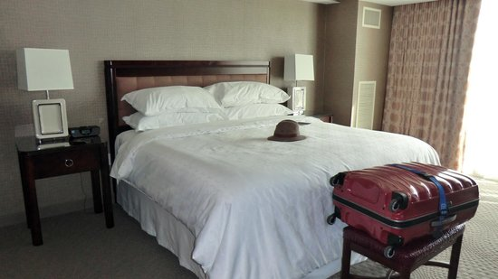 Sheraton Valley Forge Hotel: Room 501