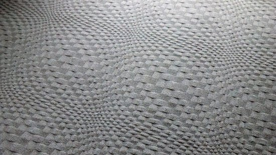 Sheraton Valley Forge Hotel: fabulous carpet