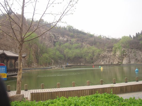 Phoenix Mountain Park: Lake on north-west side of the park.