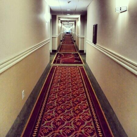 La Quinta Inn & Suites Temecula: Hallway