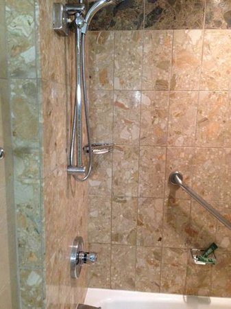 Hilton Quebec: shower
