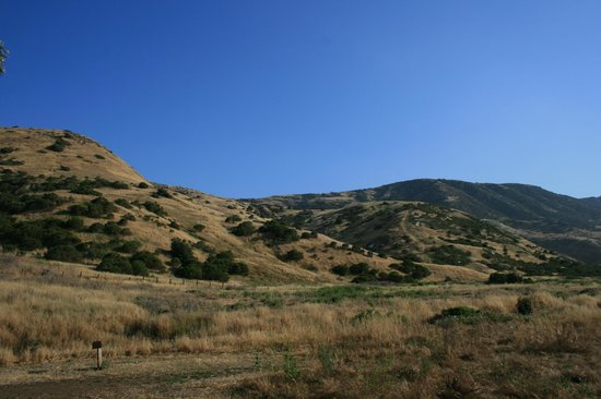 Scorpion Ranch Campground: View from site #23