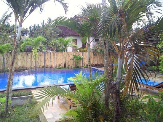 Terang Bulan Cottages: 部屋からプールを見る