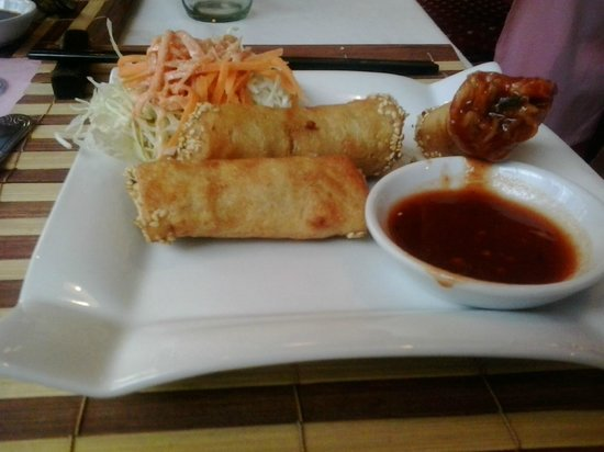Four Seasons Restaurant: chichen and veggie samosas with a touch of sesame - excellent!
