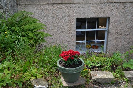 Killinagh House: Flowers