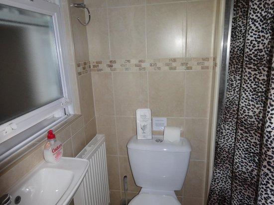 Aviva Studio Apartments: Bathroom