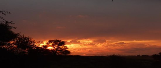 Kalagadi Transfrontier Park: Kgalagadi sunrise in Twee Revieren camp.