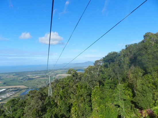 Tropic Wings Cairns Tours: Sky rail view