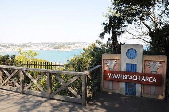 Enoshima Samuel Cocking-en: マイアミビーチ