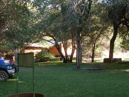 Gwabi River Lodge : Campsite
