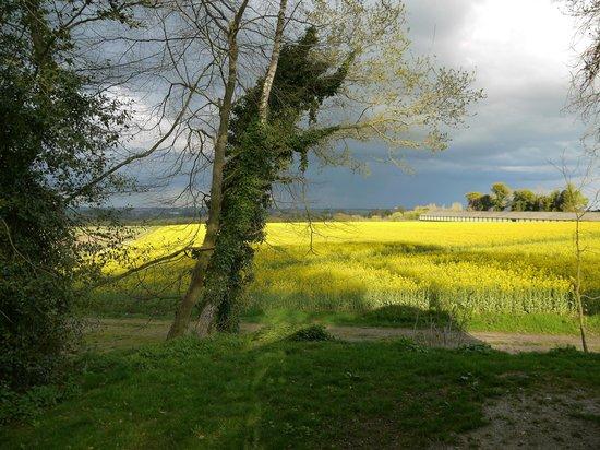 La Ferme de Lintever : Couleurs de Bretagne