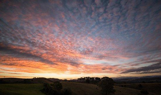 Firefly, Australie : Sunsetting