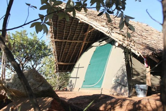 Maji Moto Eco Camp: Tent