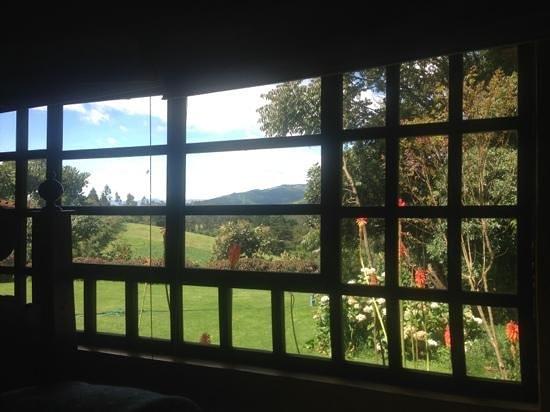 Hacienda La Alegria: view from my room