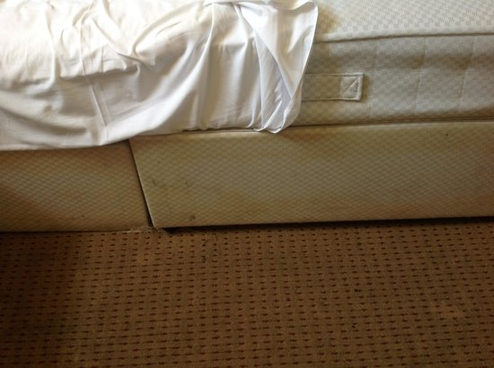 Dylan Apartments Earls Court: Should hav asked for refund and gone somewhere else