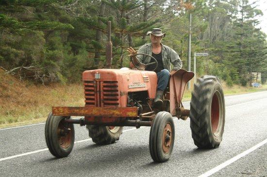 Tractors on parade, Mangawhai