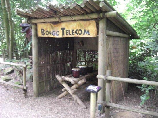 Weston Longville, UK: Bongo telecom