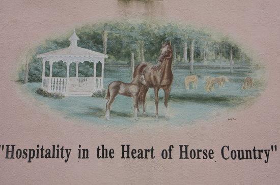 Hilton Ocala: Horse county