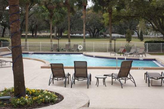 Hilton Ocala: from the swimmingpool area