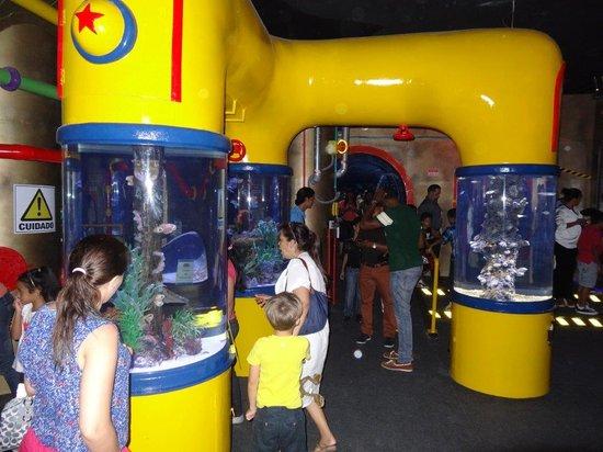 Aquamundo Sambil Santo Domingo : Area del Submarino con publico