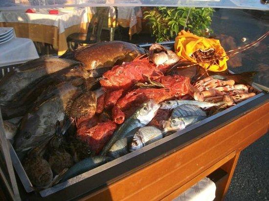 il pesce fresco del ristorante calypso