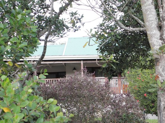 Lavender Hill Guest House : Taken from garden