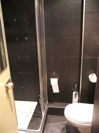 Hotel le Dauphin: Shower