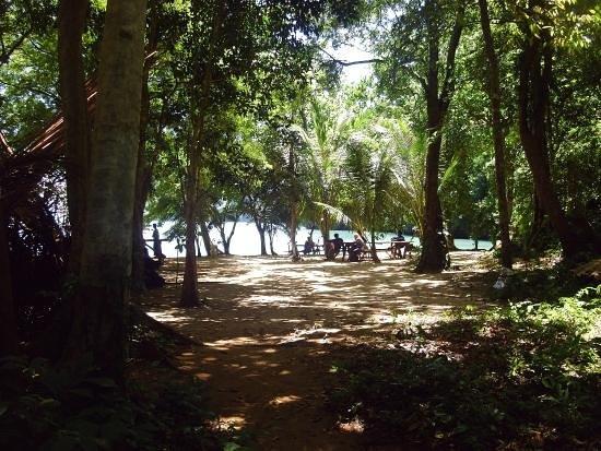 Koh Yao Noi Paradise sea kyak: KYN big tree beach to be a resort