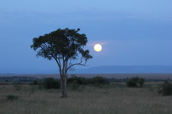 Rekero Camp, Asilia Africa: Big moon