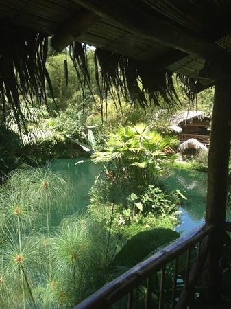 Mindo Lago: El lago