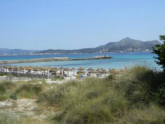 Grupotel Natura Playa : Blick vom Liegestuhl