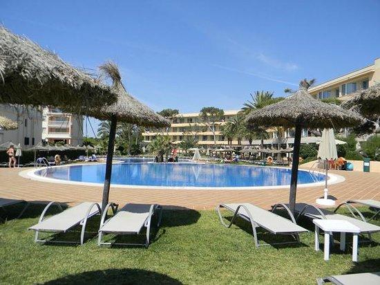 Hotel Apartamentos Natura Playa : Poollandschaft