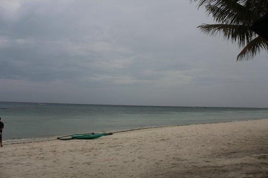 Amarela Resort: beach
