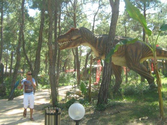 динозавр - Picture of Dinopark, Goynuk - TripAdvisor