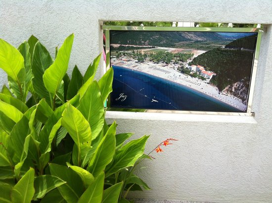 Aruba Hotel: Photos from the parking /plaja Jaz