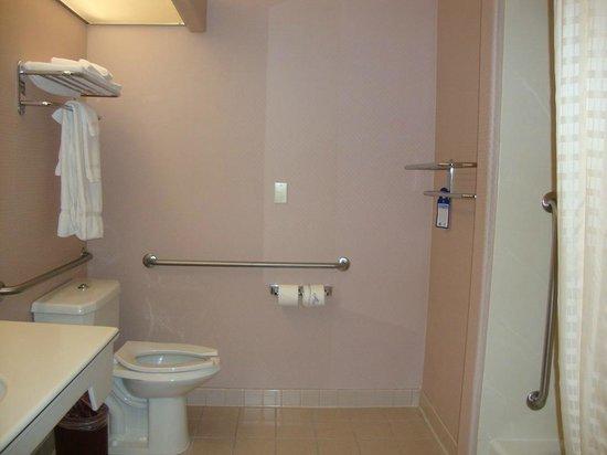 Best Western Plus Suites Hotel: Banheiro